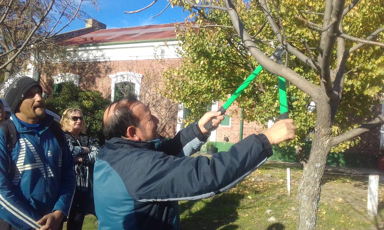 El Municipio dictará las capacitaciones de poda en arbolado público